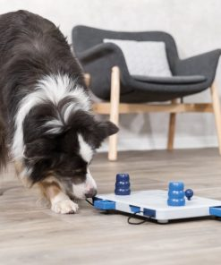 Dog playing with Trixie Move2Win puzzle toy
