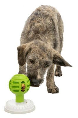 Lick'n'Snack Ball Dog Treat Toy